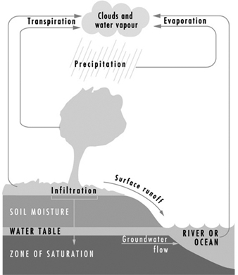 Water pollution control as a reference for water quality distilled waters h2o represent the highest state of purity waters in the hydrologic cycle may be viewed as natural ccuart Image collections